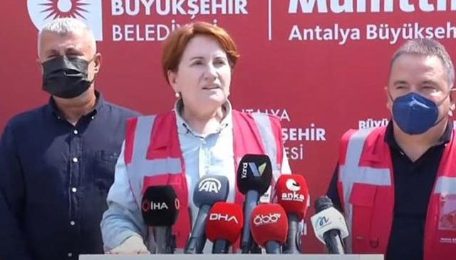 İYİ Parti Genel Başkanı Akşener'den ormanları yakanlara karşı öneri!