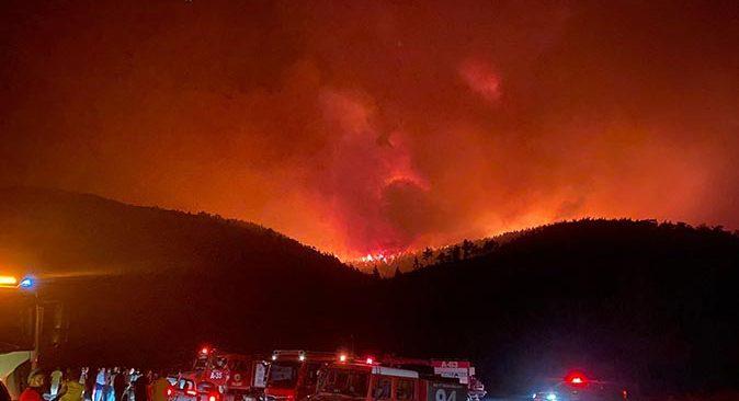Milas'taki yangın Bodrum'a sıçradı! Mahalle tahliye ediliyor