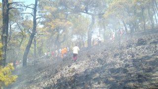 Kemer'de yangın çıktı! Vatandaşlar seferber oldu