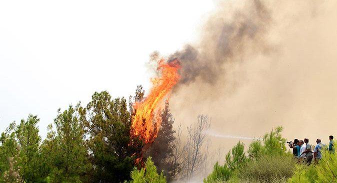 Manavgat 5 gündür yanıyor! Vatandaşlar canla başla çalışıyor