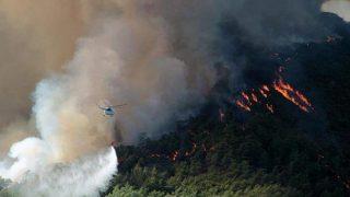 Marmaris ile Köyceğiz'deki orman yangınlarına havadan ve karadan müdahale ediliyor