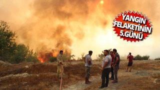 Manavagat'ta 5 gün önce çıkan orman yangını devam ediyor