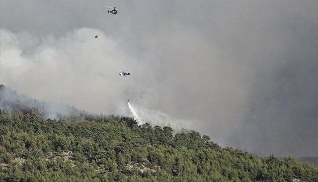 Orman Genel Müdürü Karacabey'den korkutan açıklama