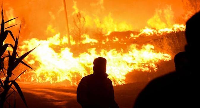Cumhurbaşkanı Erdoğan orman yangınları açıklaması