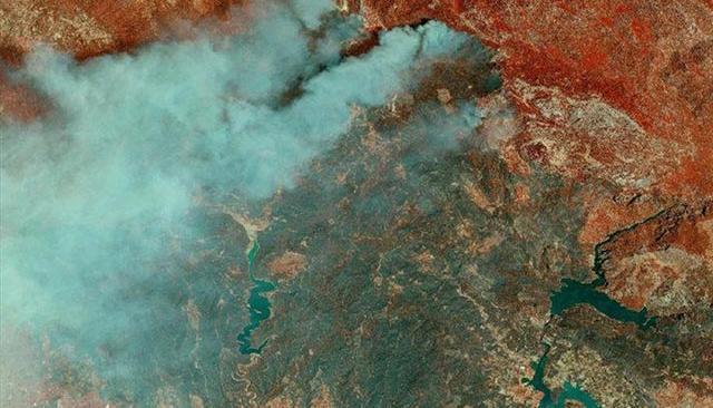 85 bin futbol sahası büyüklüğünde... Orman yangınların ağır bilançosu!