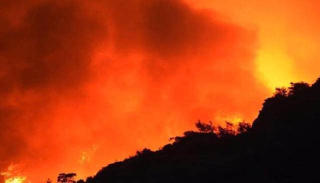 13 gündür süren Köyceğiz yangını kontrol altına alındı