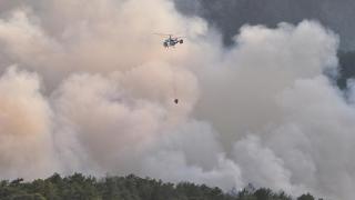 SON DAKİKA! Muğla Seydikemer'de orman yangını