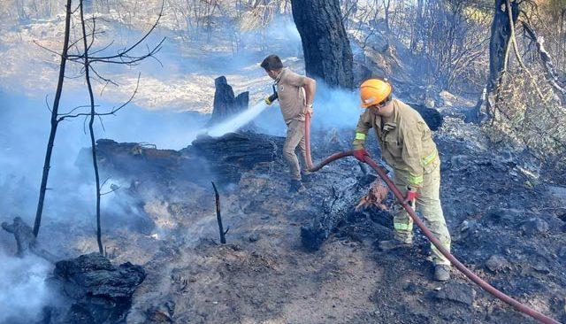 Kumluca'da korkutan yangın! 1 kişi gözaltında