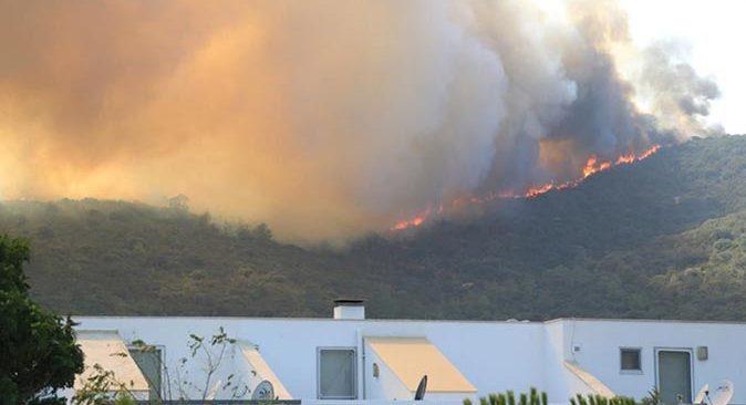 Muğla Milas'ta yangın yerleşim yerlerini tehdit ediyor! Vatandaşlar tahliye ediliyor