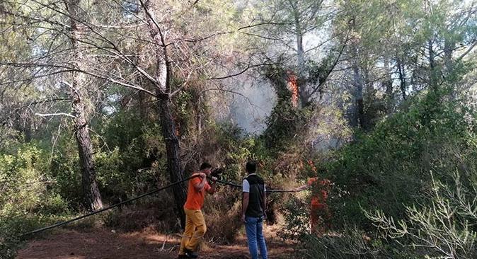 Semih Kuloğlu Antalya'daki yangını çıkardığını itiraf etti