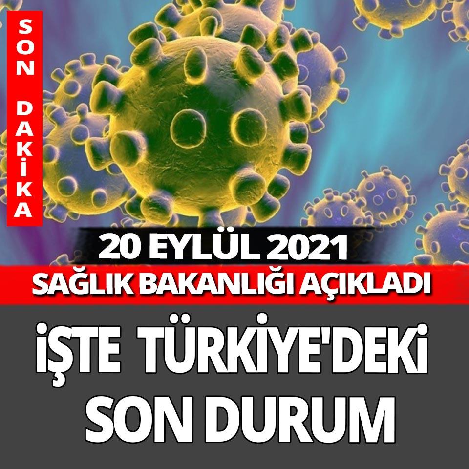 Son dakika... 20 Eylül Pazartesi Türkiye'nin Yeni Koronavirüs Tablosu açıklandı