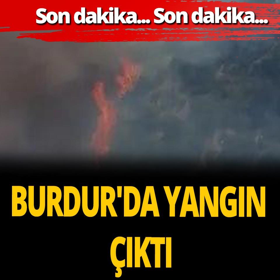 Son dakika... Burdur'da orman yangını çıktı