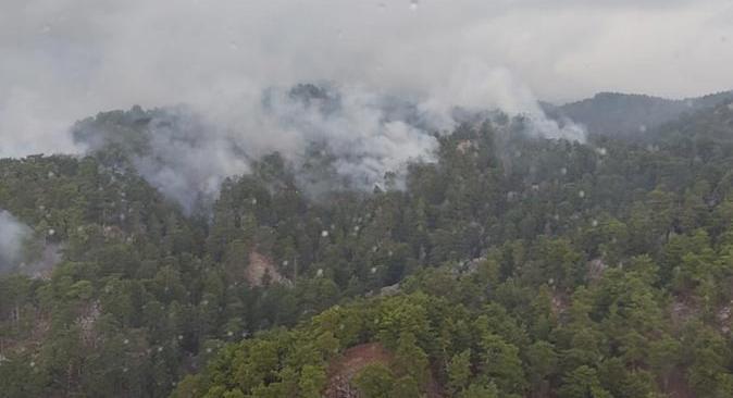 Manavgat'ta yıldırım düşmesi 4 hektarlık ormanı yaktı