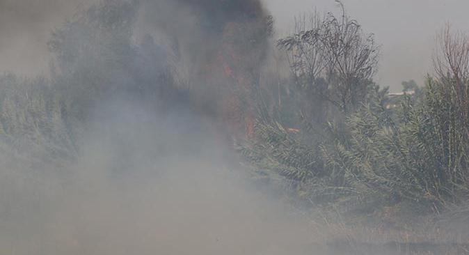 Antalya'da mısır tarlası yangın çıktı , dumandan göz gözü görmedi