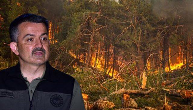 Bakan Pakdemirli açıkladı! Antalya'daki yangını bakın kim çıkarmış...