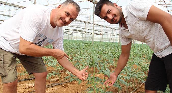 Rusya'nın domates ve biberde yasağıkaldırması çiftçileri mutlu etti