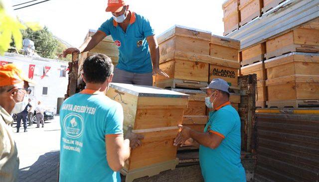 Yangında kovanları zarar gören 23 arıcıya ücretsiz 350 arı kovanı