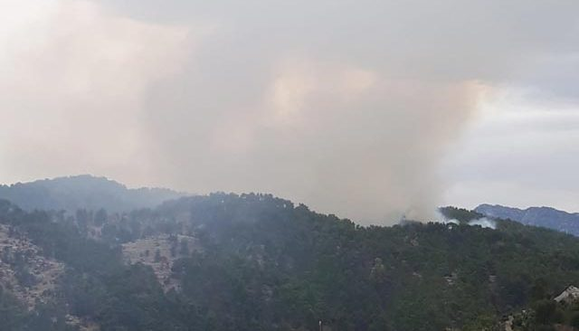 Manavgat'ta aynı bölgede ikinci yangın! Yayılarak devam ediyor...