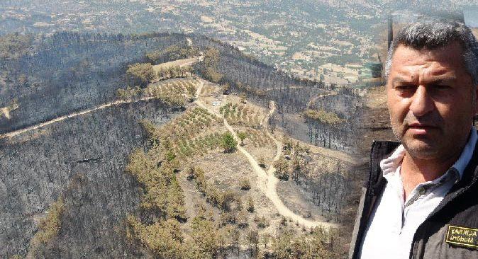 Manavgat'ta yanan ormanlık alanlar dikime hazırlanıyor