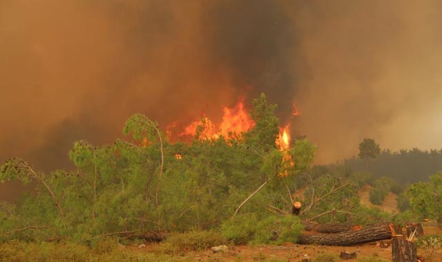 Manavgat yangınlarının iddianamesi kabul edildi