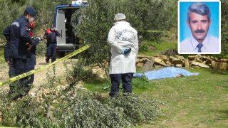 Zeytin ağacı yüzünden kardeşini öldürdü! Cezası belli oldu...
