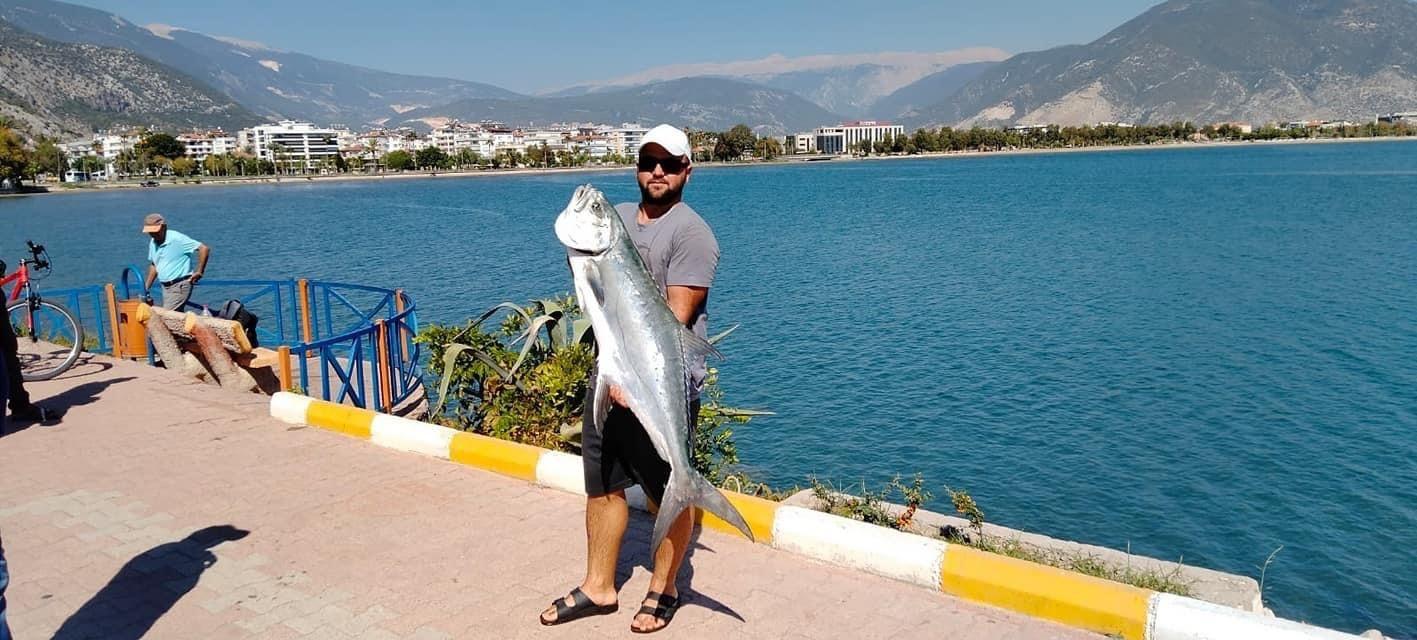 Kıyıdan 15 kiloluk liça balığı avladı
