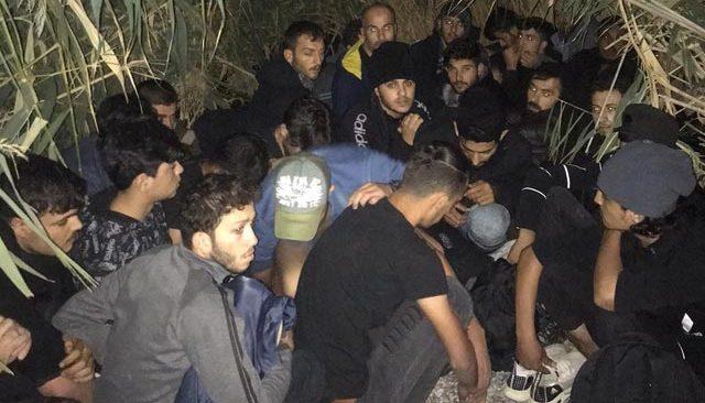 Antalya'da düzensiz göçmen operasyonu! Sazlık alanda yakalandılar...
